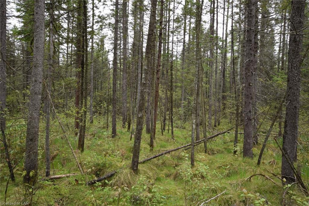 LOT 29 HARBURN Road, Haliburton, Ontario (ID 271707)
