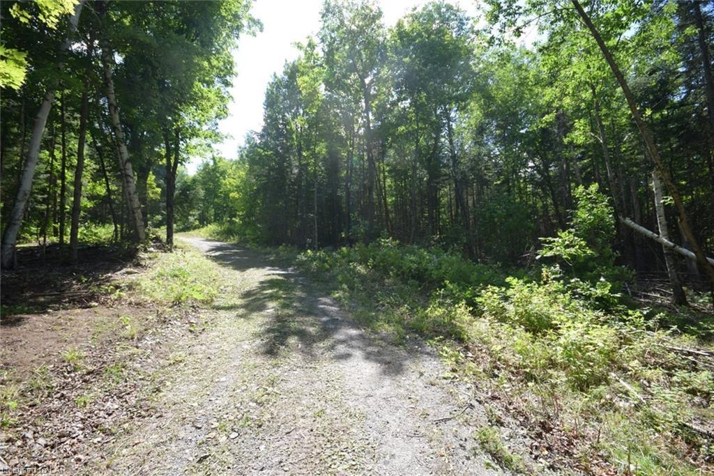 LOT 1 MORAINE Drive, Highlands East, Ontario (ID 40007628)