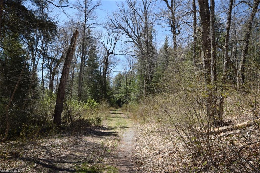 - MINNOW Drive, Haliburton, Ontario (ID 256344)