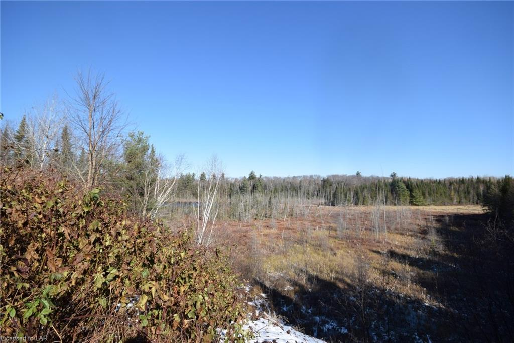 - HARBURN Road, Haliburton, Ontario (ID 40041379)
