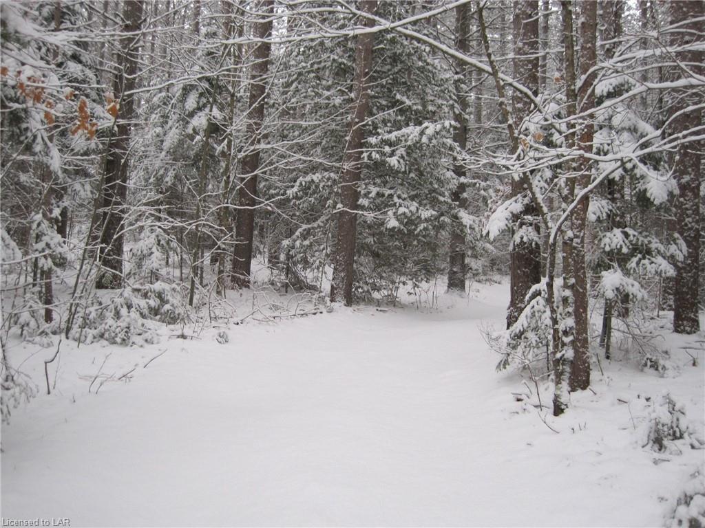 - WHITE LAKE Road, Kinmount, Ontario (ID 40048914)