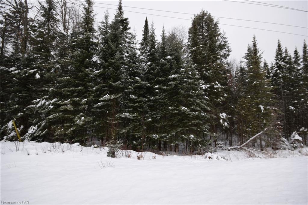. HIGHWAY 118, Haliburton, Ontario (ID 40057765)
