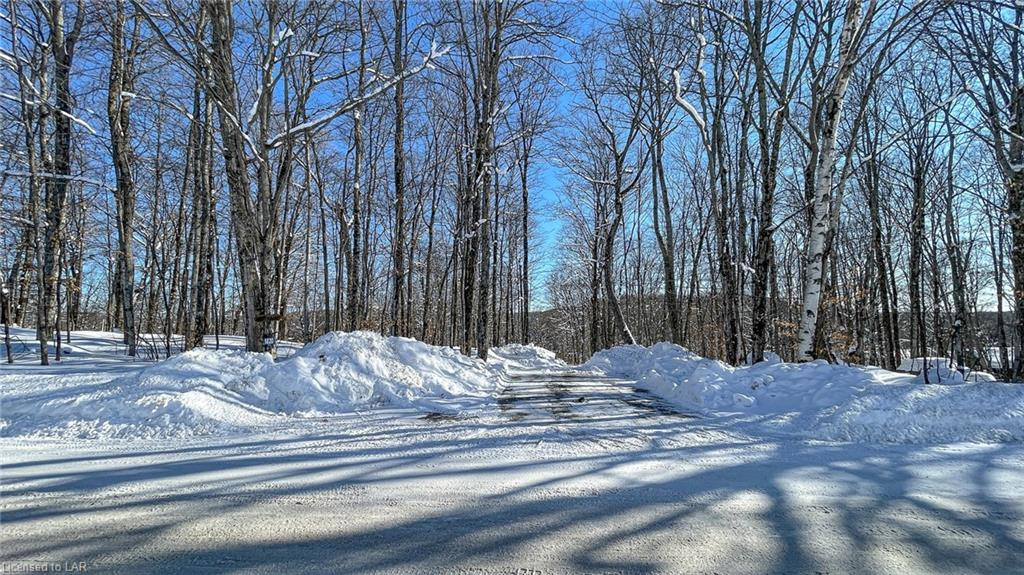 1820 TRAPPERS TRAIL Road, Haliburton, Ontario (ID 40063533)
