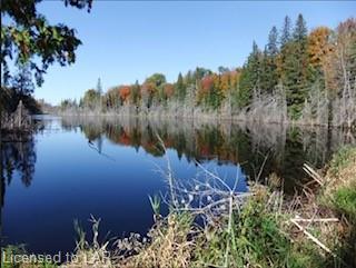 1582 TULIP Road, Minden, Ontario (ID 40090813)
