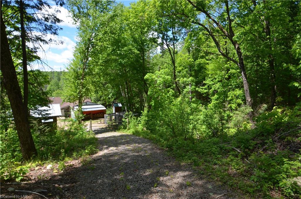 5980 LIVINGSTONE LAKE Road, Dorset, Ontario (ID 264139)