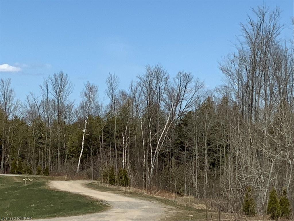 464 FLORENCE Drive, Peterborough, Ontario (ID 256176)