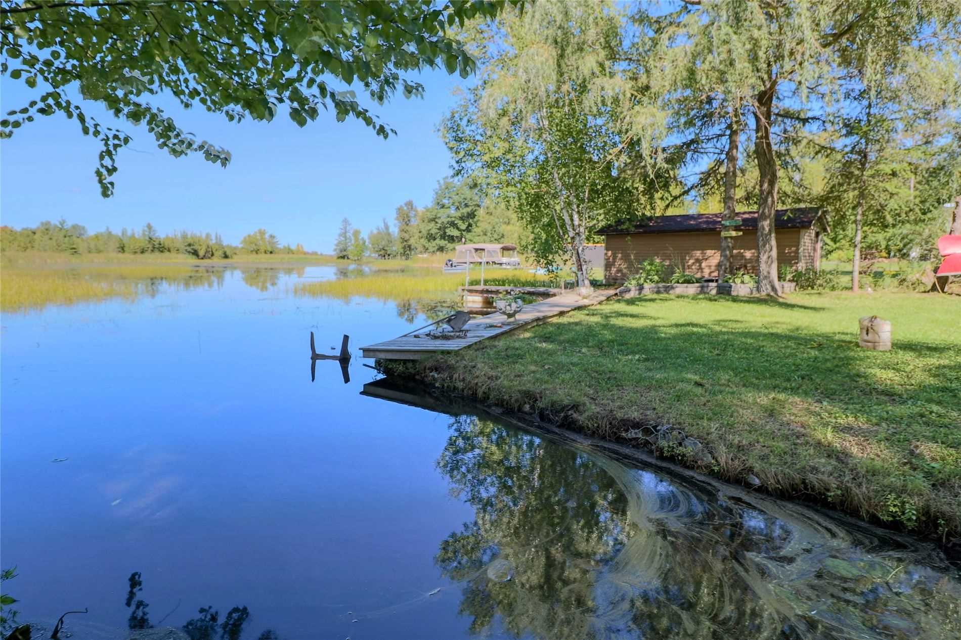 1 Driftwood Shores Rd, Kawartha Lakes, Ontario (ID X4913113)