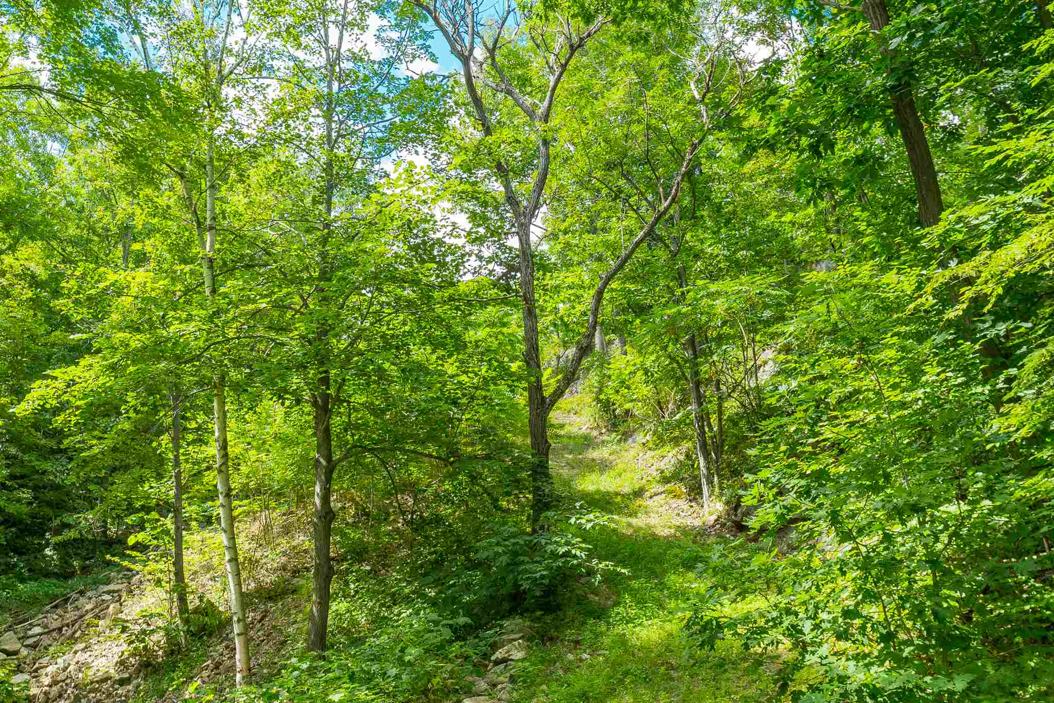 80 Arrowwood Lane, South Frontenac, Ontario (ID K19005390)