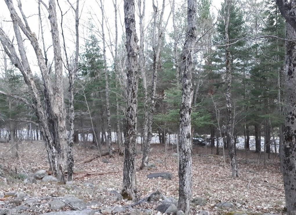 60 Highway, Huntsville, Ontario (ID 240660)