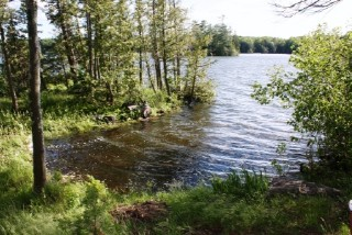 2402 ISLAND 240, Trent Lakes, Ontario (ID 154201030000100)