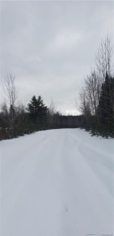 98-1 Ripley Lane, Boiestown, New Brunswick (ID NB052983)