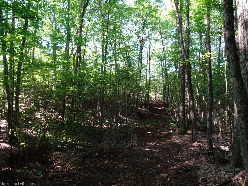 SELECT Trail, Haliburton, Ontario (ID 40007889)