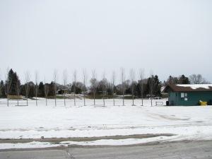 97 Millard Ave, Newmarket, Ontario