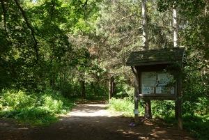 Walking Trails at Jokers  Hill