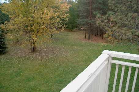 East Gwillimbury, Ontario (ID N1982524)
