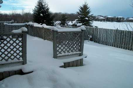 Near Portage Trail, Barrie, Ontario (ID X2056594)