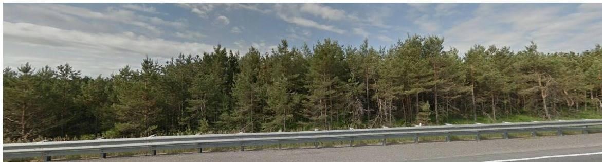 3900 Regional Road 23 Rd, Uxbridge, Ontario (ID N5072430)