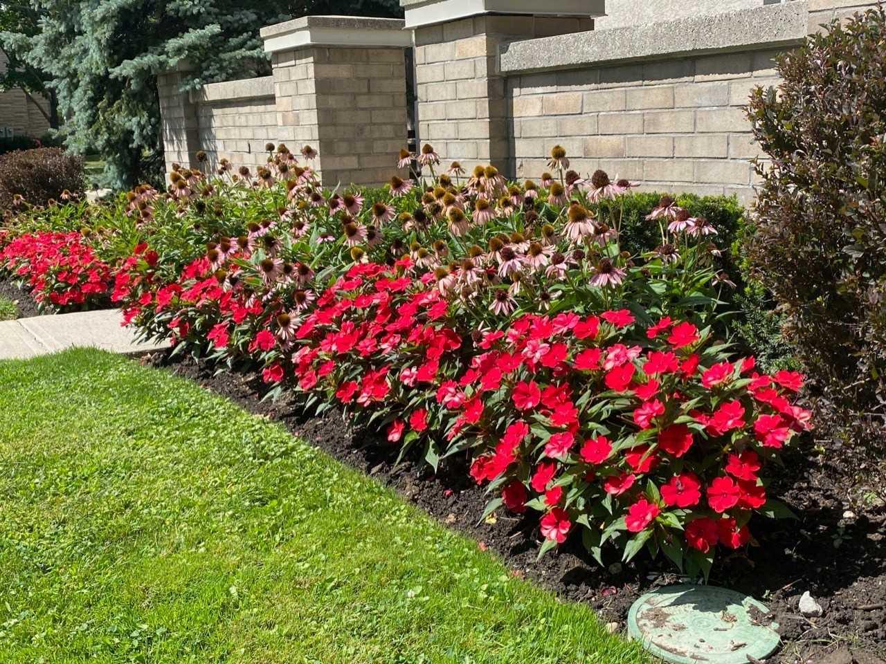 5418 Yonge St, Toronto, Ontario (ID C4897608)