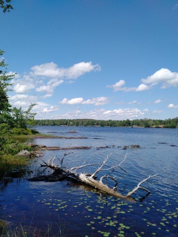Lot 5-4 Natural Forest Lake Road, Upper Cornwall, Nova Scotia (ID 201808465)