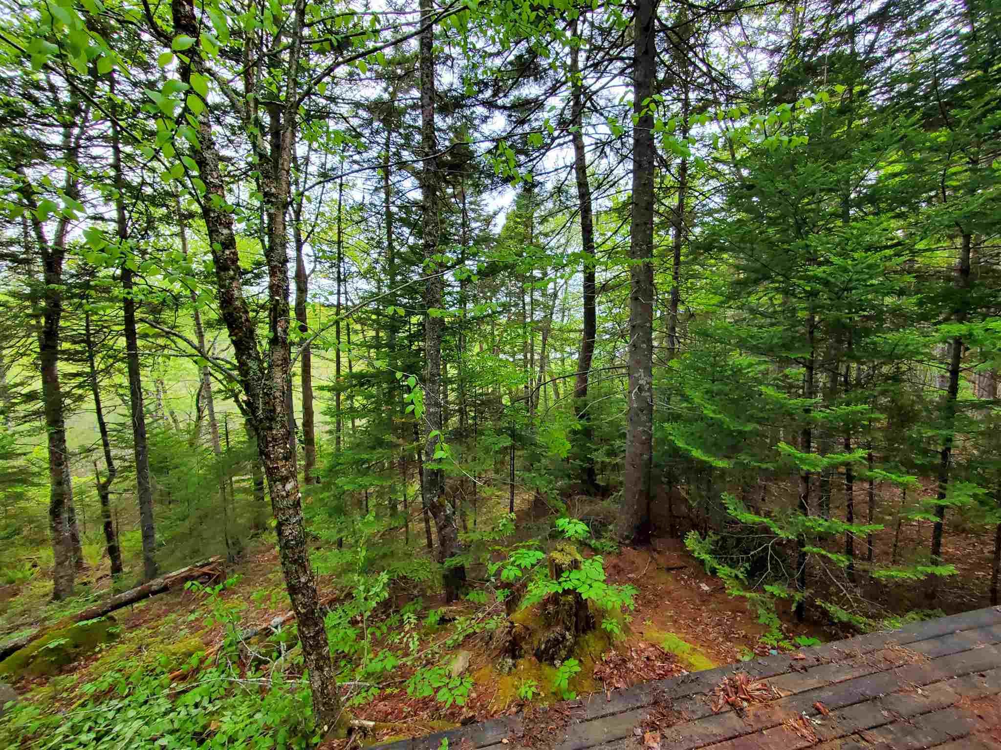 53 Shore Road, Walden, Nova Scotia (ID 202112968)