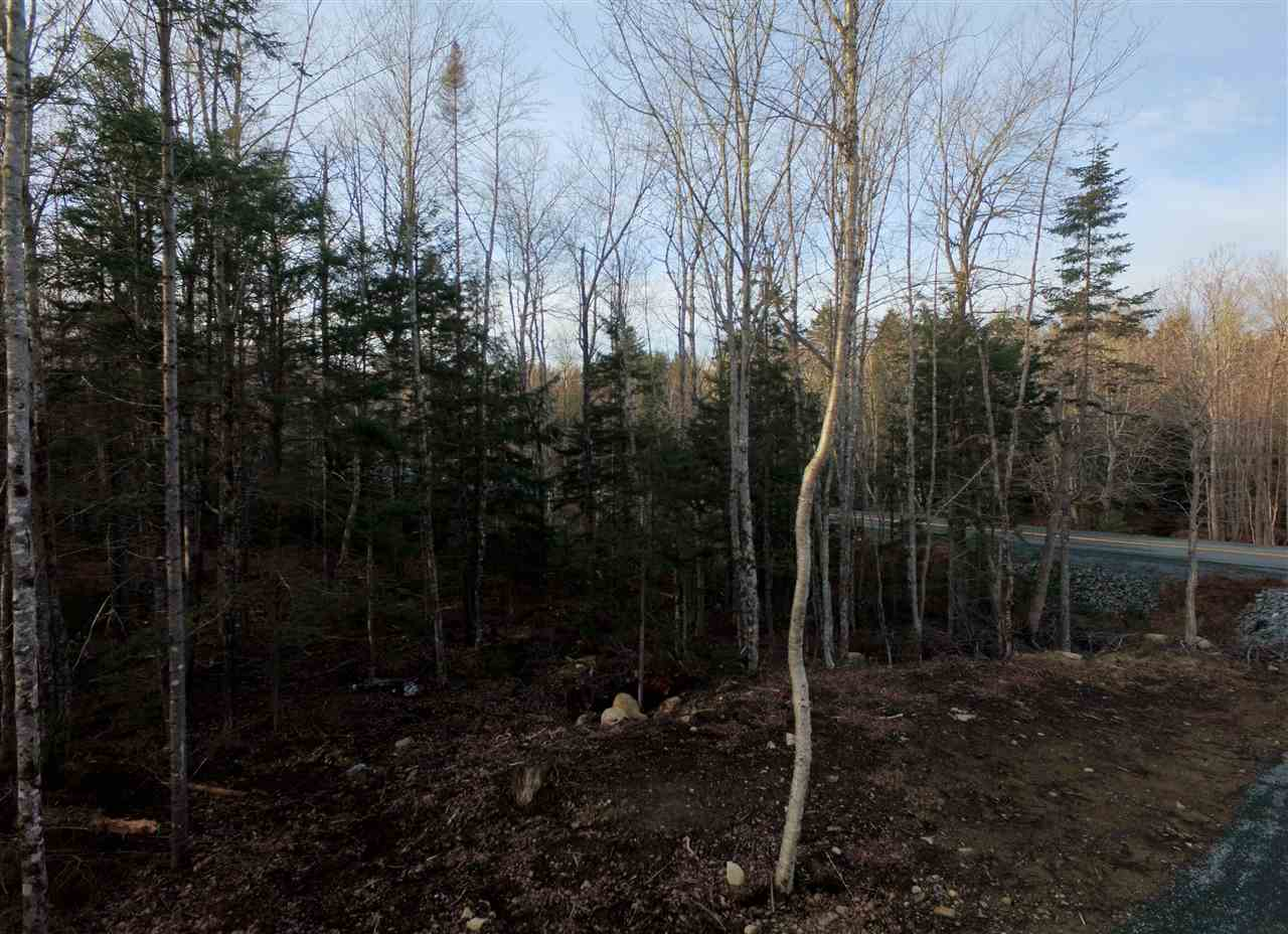 Lot 7 Forest Haven Drive, Italy Cross, Nova Scotia (ID 202003746)