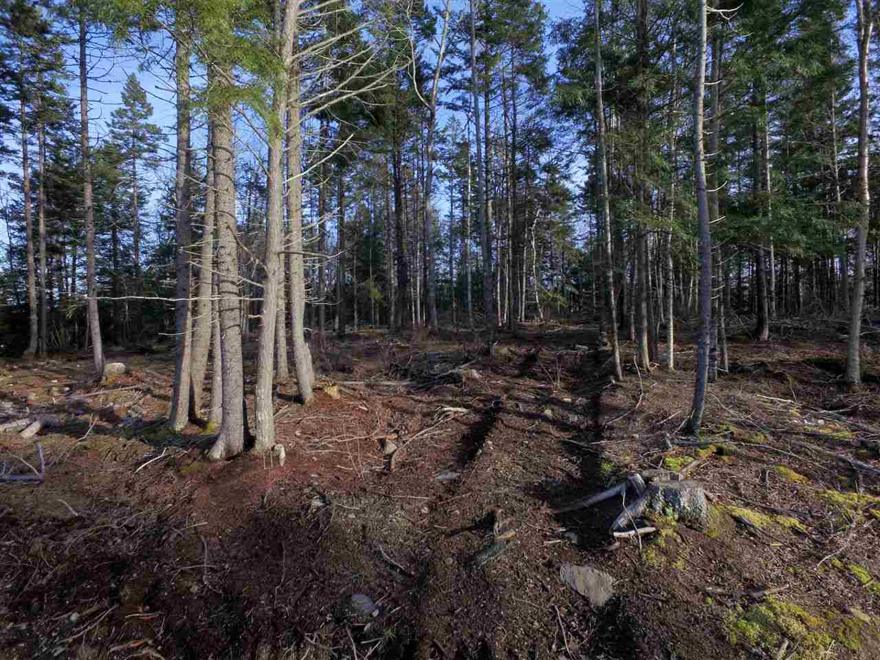 Lot 8 Forest Haven Drive, Italy Cross, Nova Scotia (ID 202003748)