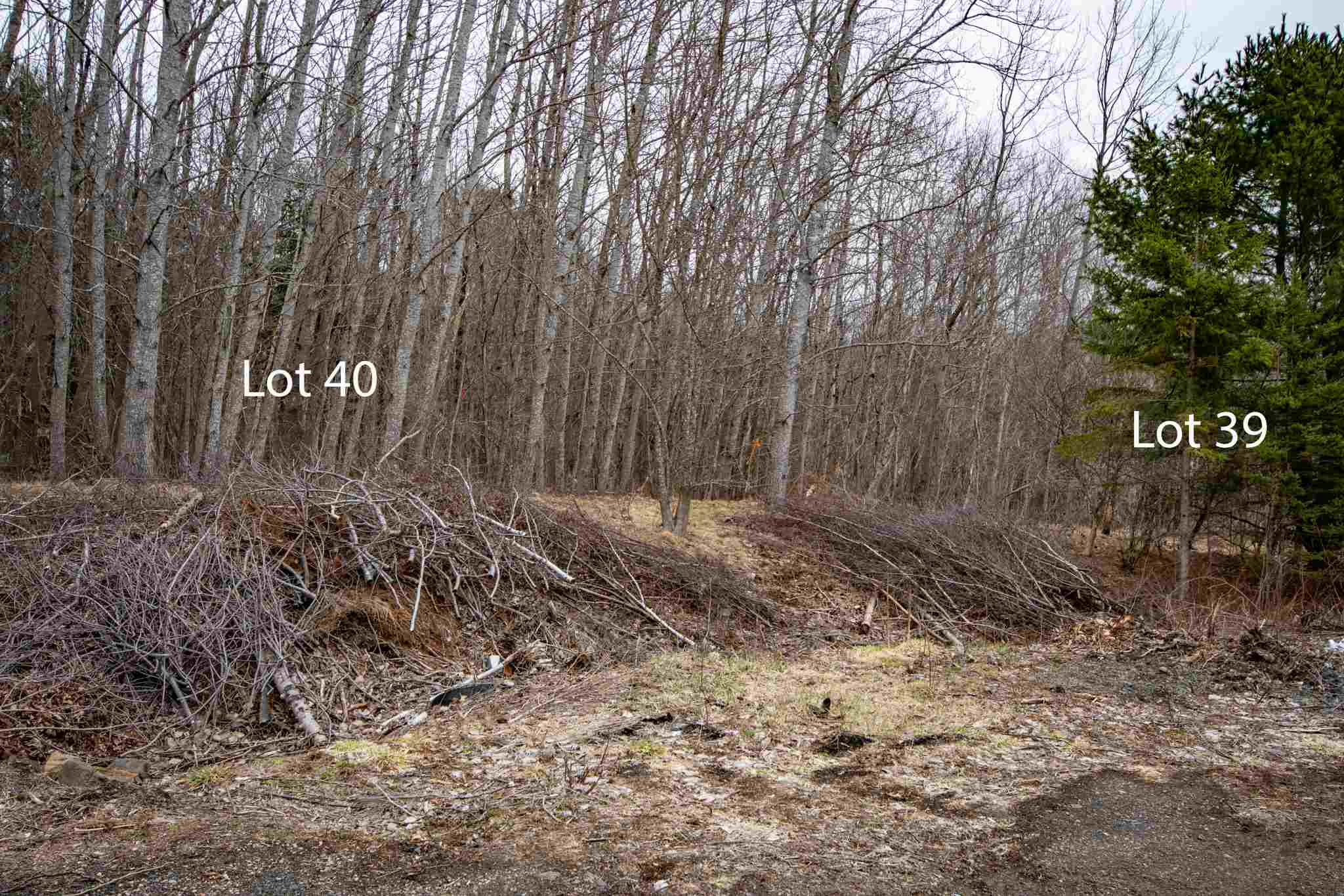 Lot 39 DeLong Lane, New Germany, Nova Scotia (ID 202106526)