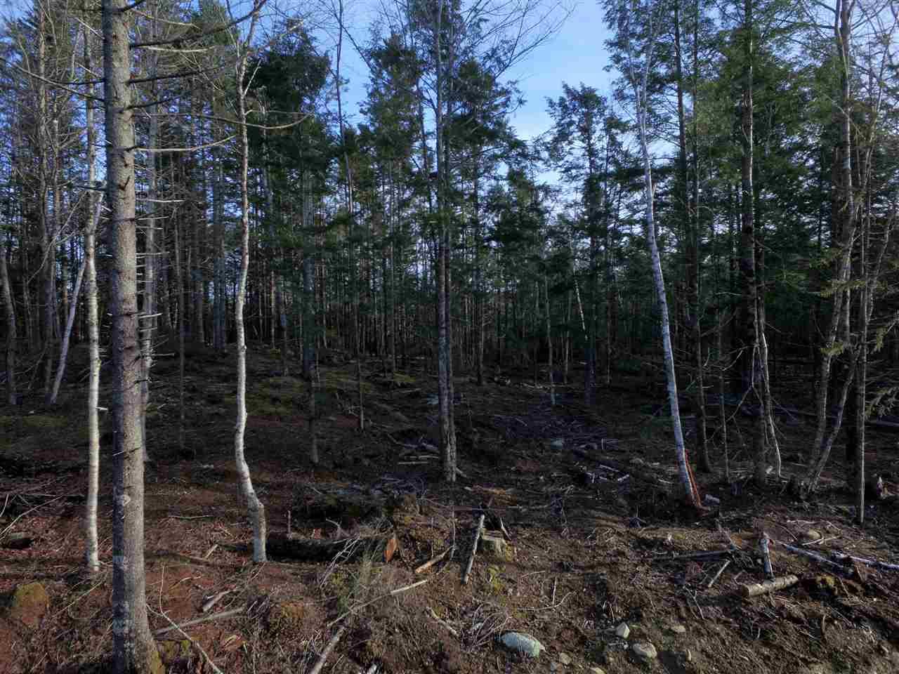 Lot 2 Forest Haven Drive, Italy Cross, Nova Scotia (ID 202110121)