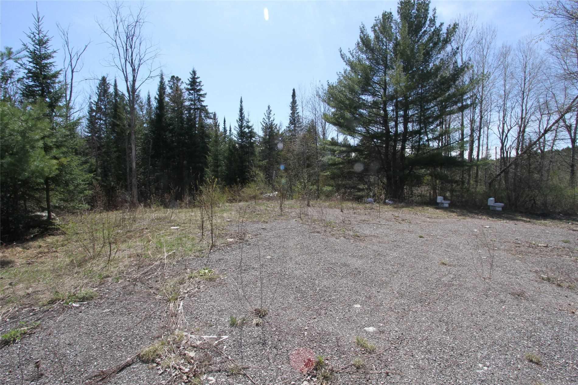 259 County Rd 41 Rd, Kawartha Lakes, Ontario (ID X5210398)