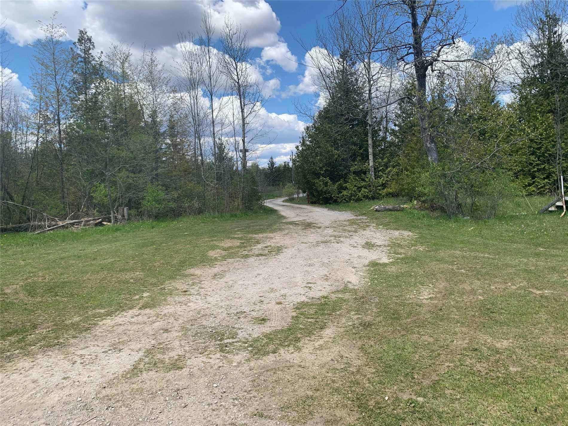 220 Mcguire Beach Rd, Kawartha Lakes, Ontario (ID X5338564)