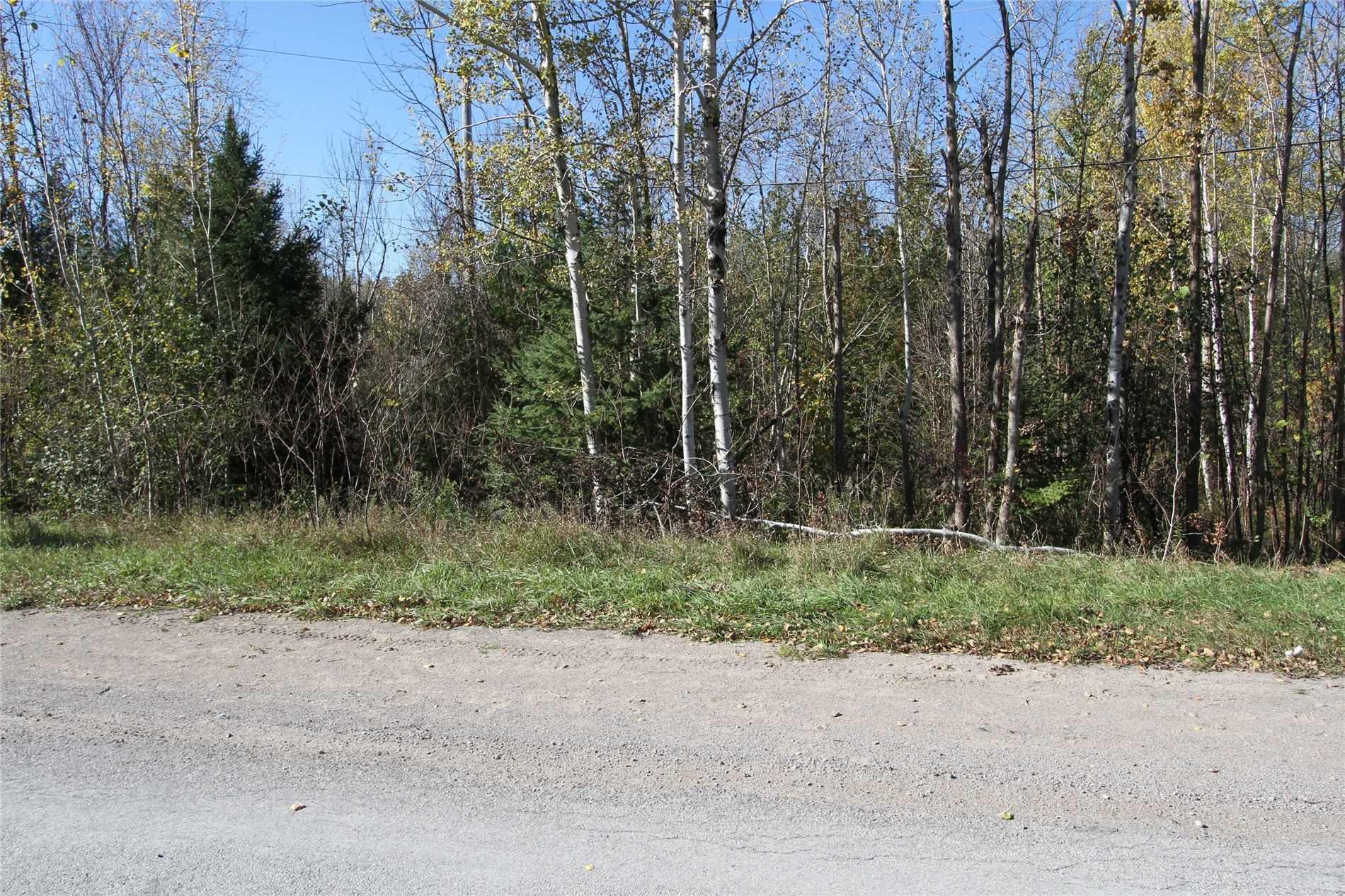 Lt 48 Centennial Park Rd, Kawartha Lakes, Ontario (ID X5380435)