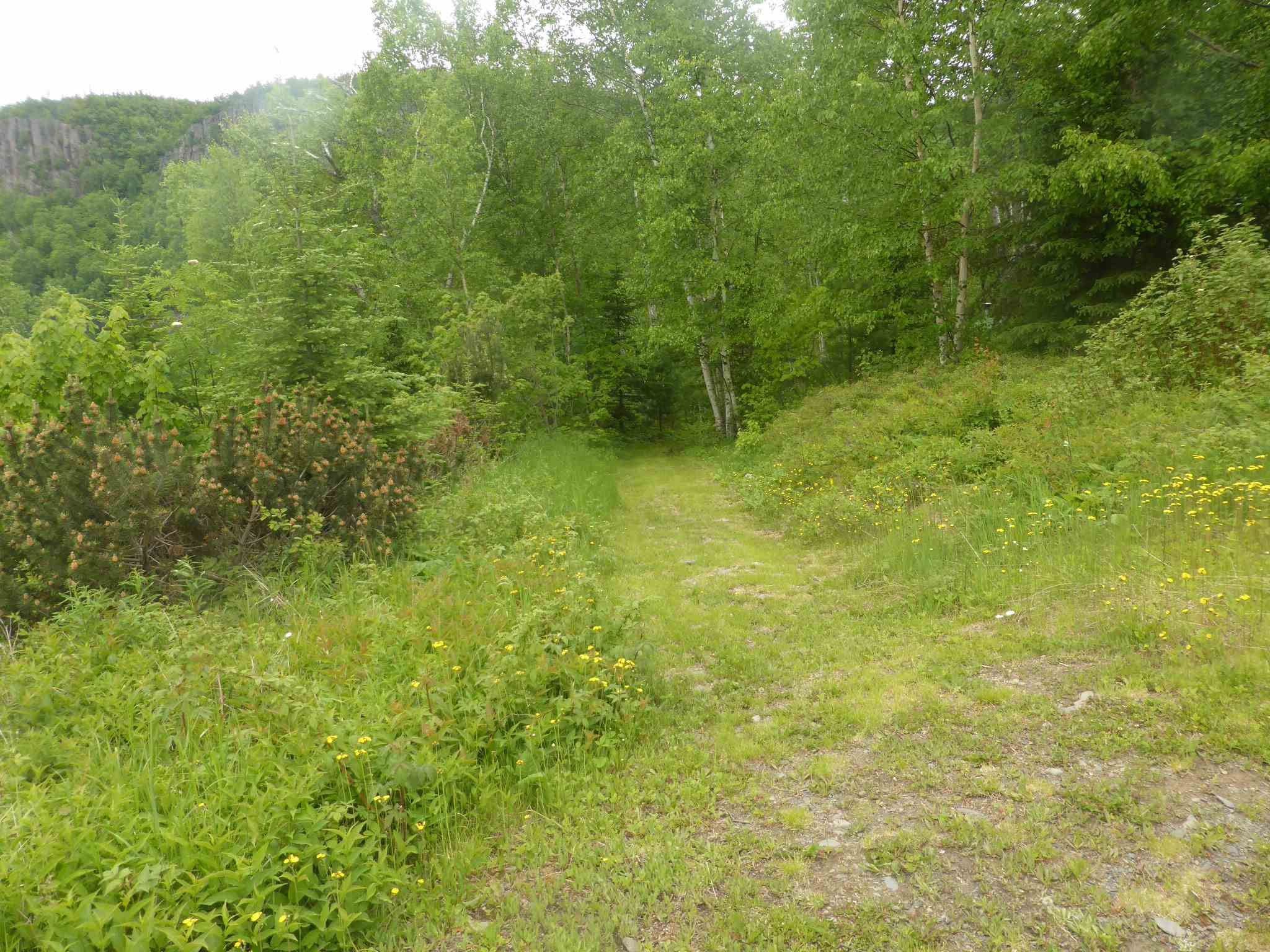 14 Island Avenue, Neebing Township, Ontario (ID TB201409)