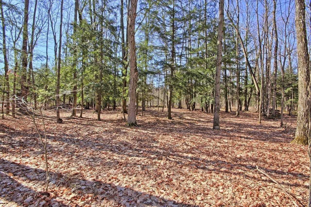 54 Bridle Path, East Gwillimbury, Ontario (ID N4675841)