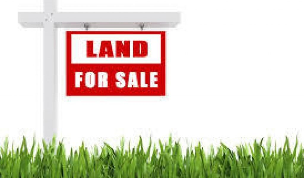 12669 County Rd 27 - Lot 7, Springwater Township, Ontario (ID S5369703)