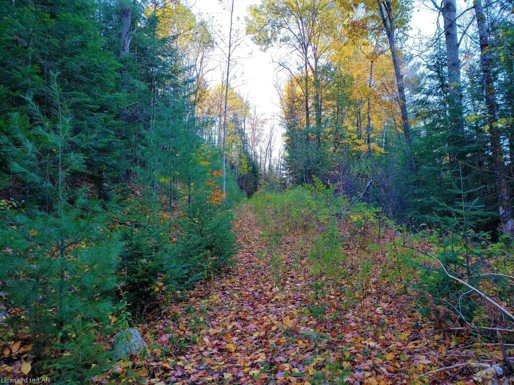 BETHEL Road, Minden, Ontario (ID 240391)
