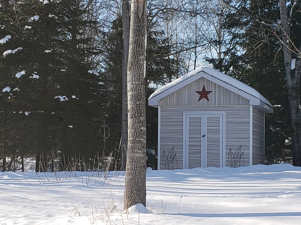 Storage Shed with Hydro