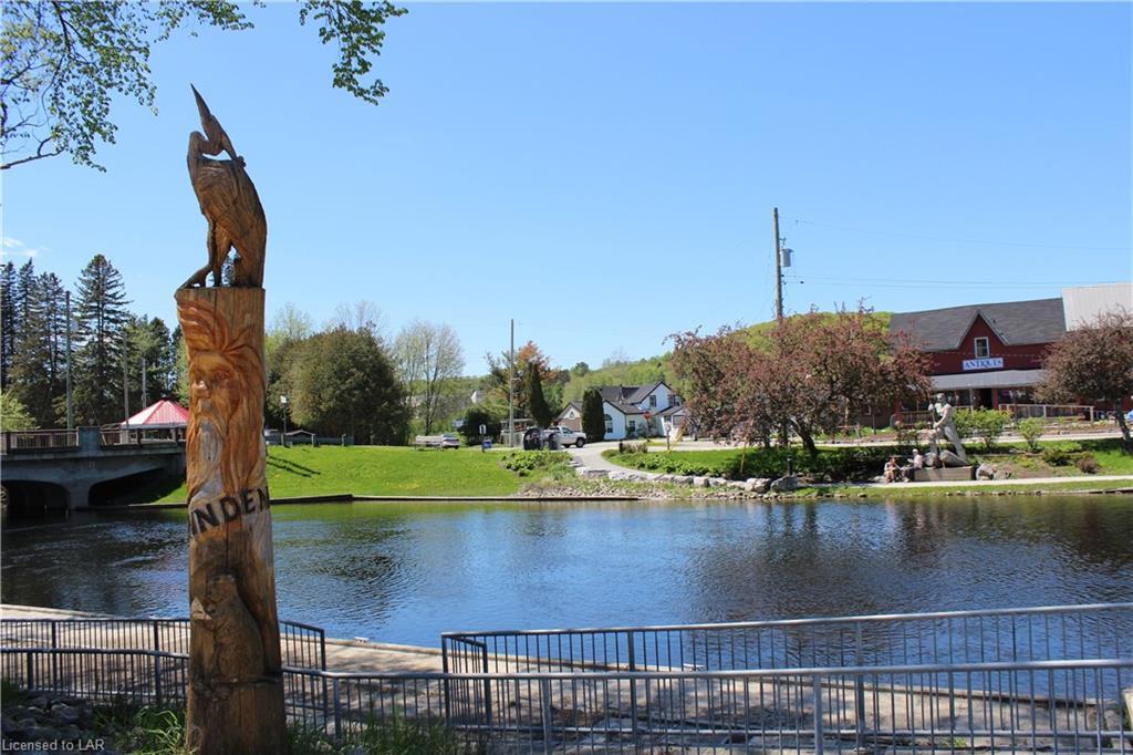 1009 COUNTY ROAD 21 Road, Minden, Ontario (ID 40040158)