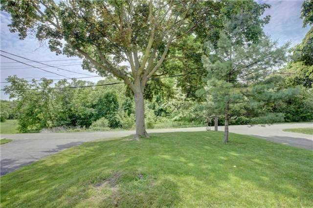 58 Springbrook Gdns, Toronto, Ontario (ID W4253043)