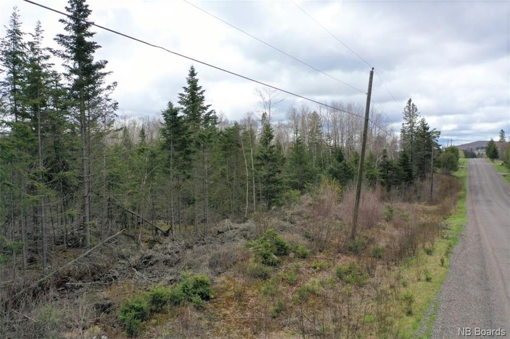 - Guthrie Road, Bloomfield, New Brunswick (ID NB057679)