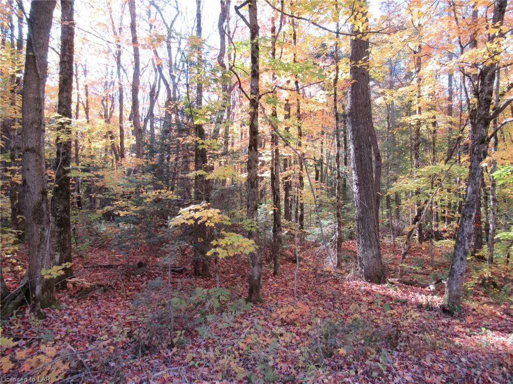 LOT 7 WHITNEY Road, Perry Township, Ontario (ID 227918)