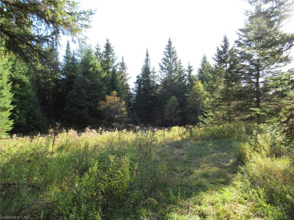 LOT 2 WHITNEY Road, Perry Township, Ontario (ID 227949)