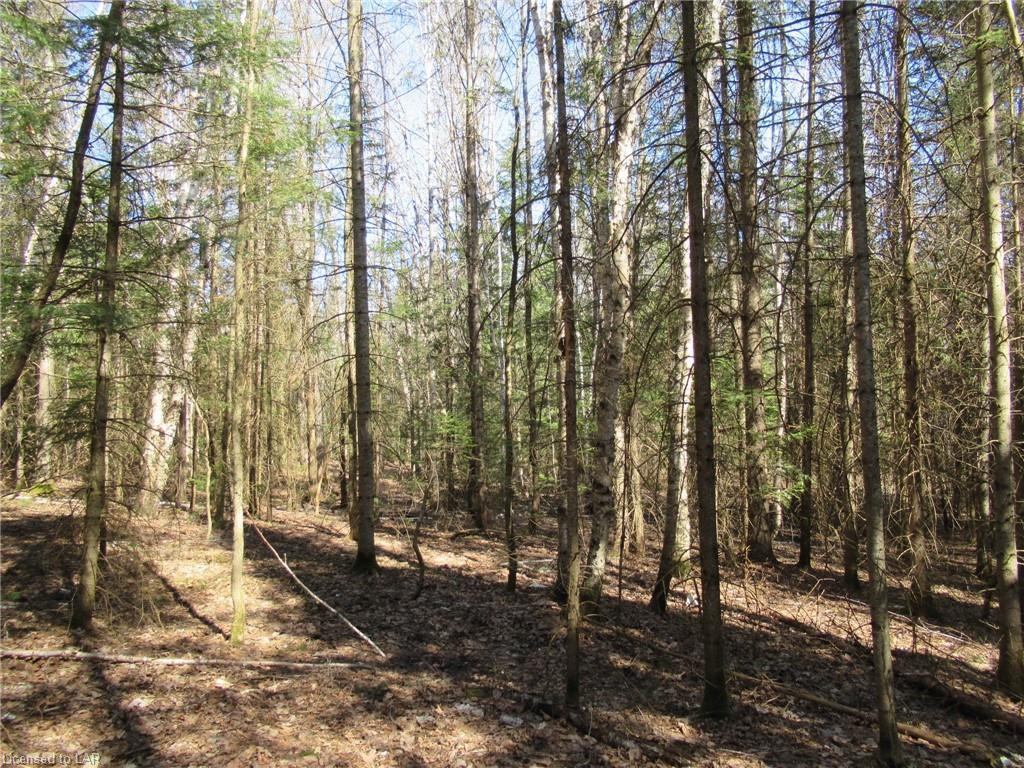 PART 2 STAHLS Road, Huntsville, Ontario (ID 250653)