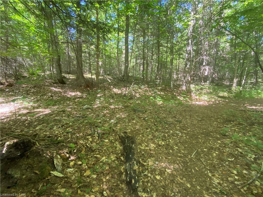 WEST SHORE Road, Haliburton, Ontario (ID 276239)