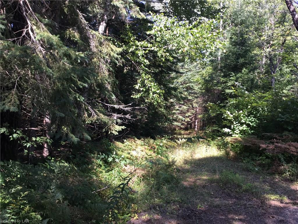 1690 CHETWYND Road E, Burk's Falls, Ontario (ID 153760)