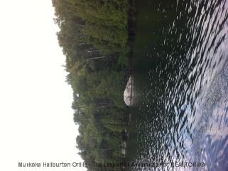 WATER ACCESS, Kearney, Ontario (ID 521490482)
