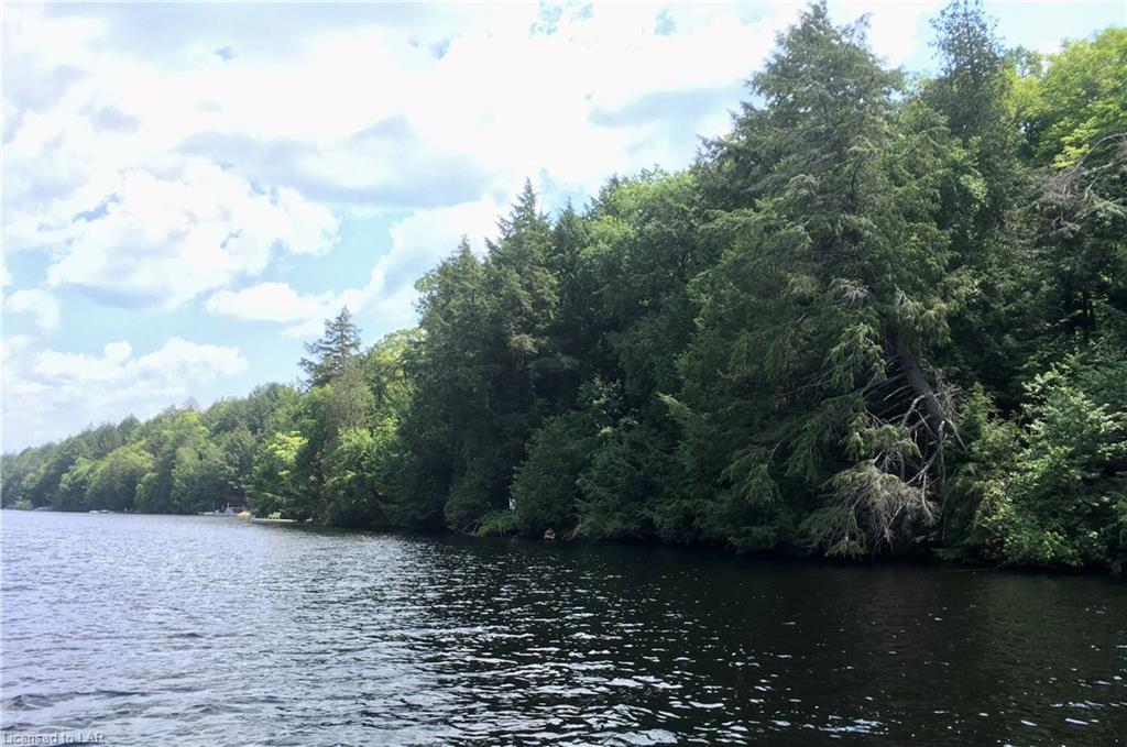 XX TOAD Lake, Port Loring, Ontario (ID 211743)