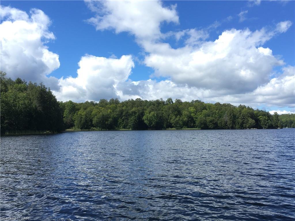 HH WILSON Lake, Port Loring, Ontario (ID 40014549)