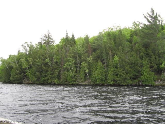 XX TOAD LAKE Shores, Port Loring, Ontario (ID 40144061)