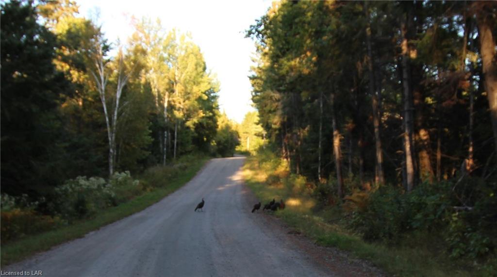 880 BARRETT Road, Commanda, Ontario (ID 238620)