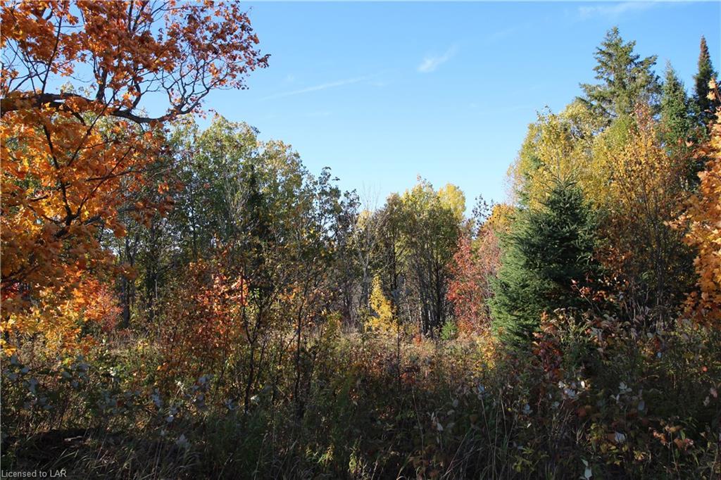 NA TRAILAINE Road, Arnstein, Ontario (ID 239344)
